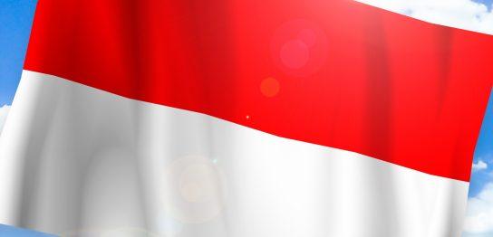 インドネシア人と国際結婚