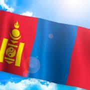 モンゴル人と国際結婚